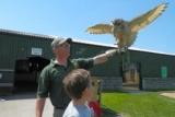 Visit Farmer Teds Farm Park