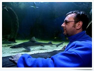 WSM SeaQuarium