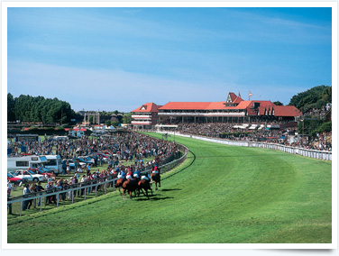 Why not visit Chester Races for a great day out