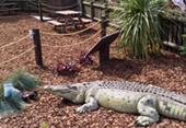 Camber Sands - Dinosaur Park