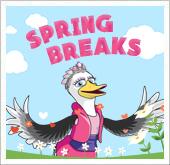2016 Spring Breaks!